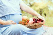 妊娠中のあなたへ~赤ちゃんのためにもタンパク質が豊富な食事を