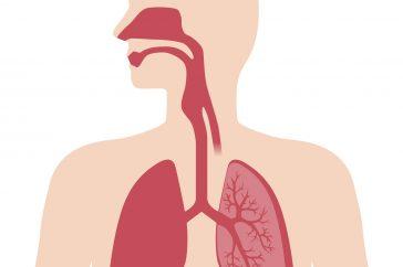 気管支拡張症の治療の目的と、使われる治療薬の種類とは?