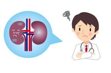 腎臓に結石ができてしまう原因とは?!腎結石は食事で予防できるの?