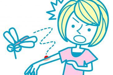デング熱対策を考えよう! 予防方法を解説します