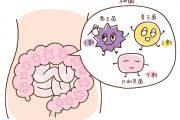 下痢や軟便などと密接な関わりを持つ「腸内フローラ」とは?
