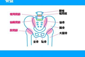 変形性股関節症の人工股関節留置術とは?