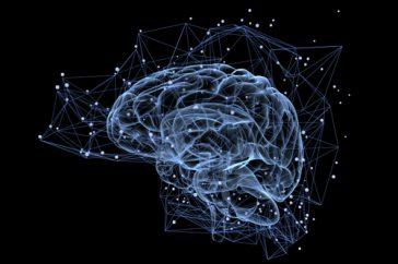 脳梗塞は脳卒中の一種って本当?