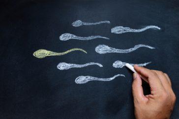 不妊は精子の運動率も影響してるの?! ― 精子無力症とは