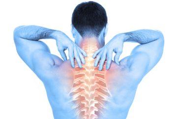 背中の痛みの原因は胃の調子が悪いから?どんな病気の可能性がある?