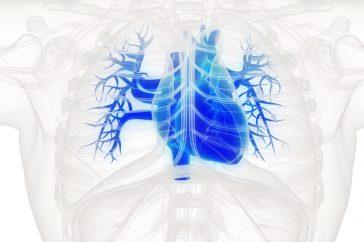 心臓にがんはできにくいって本当?腫瘍ができたときの症状は?